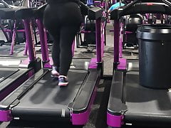 BBW Pawg on Treadmill